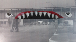 original bridge shark artwork proposal
