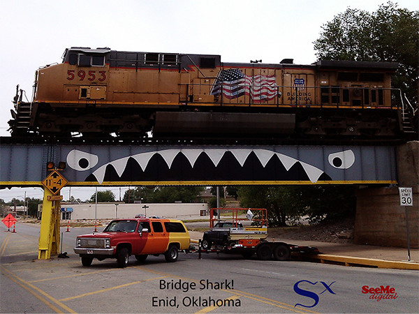 Bridge Shark with Train